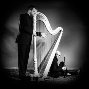 Michal is a phenomenal harpist who can play either classic or popular music.